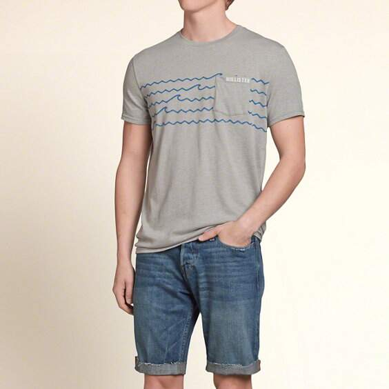 Camisa Hollister So Cal Graphic Pocket Tee - Cinza