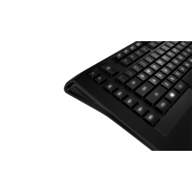 # BLACK NOVEMBER # Teclado SteelSeries Apex Raw