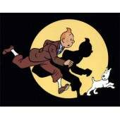 As Aventuras de Tin Tin (Completo 03 DVDs)