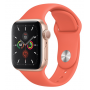 Apple Watch Series 5 Gold Aluminum Case with Clementine Sport Band