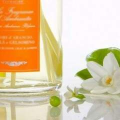 Essência de Lime Luna BT - 10ml