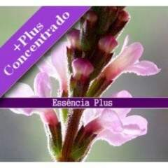Essência de Verbena +Plus 10ml