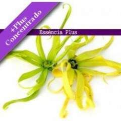 Essência de Ylang Ylang +Plus 10ml