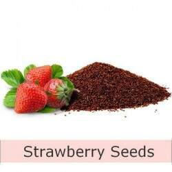 Microesfera Esfoliante Strawberry Seeds (Semente de Morango)