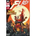 GIBI THE FLASH Nº57