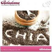 CHIA INTEGRAL 500mg