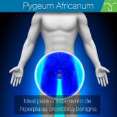 Pygeum Africanun Extrato Seco 100mg