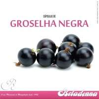 Groselha Negra ACE 30 - 167 mg