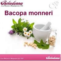 Bacopa monneri 250mg