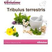 Tribullus Terrestris 250mg