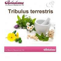 Tribullus Terrestris 500mg