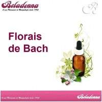 Florais de Bach - Sweet Chestnut 30mL