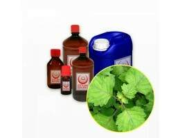 Óleo Essencial Patchouly Light Importado - 100ml (Pogestemon Cablin Benth)