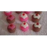 Mini cupcake com cereja 6 cav.