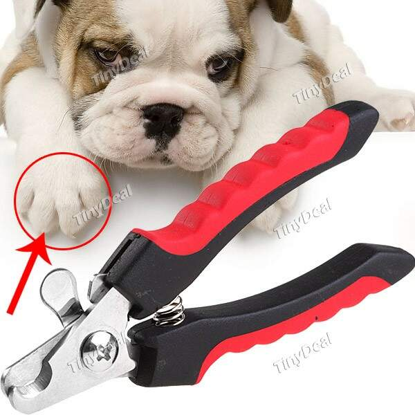 Direto Manipular Pet Dog Cat Prego Clippers tesoura de unha