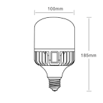 LÂMPADA LED - SUPER BULBO T100 - 30W 40W 50W 60W 70W