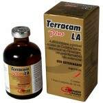 TERRACAM LA PLUS (OXITETRACICLINA + PIROXICAM) INJETÁVEL - 50ml