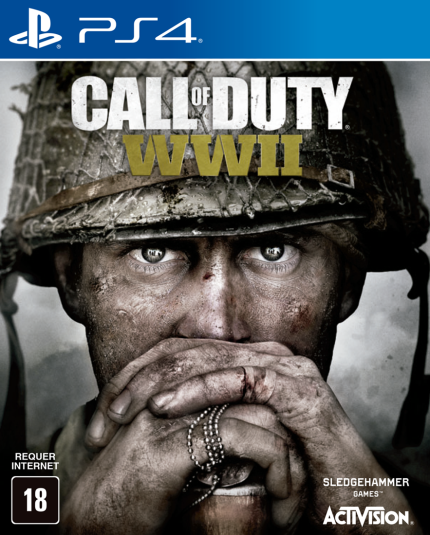 Call Of Duty: WWII - Ps4 (Seminovo)