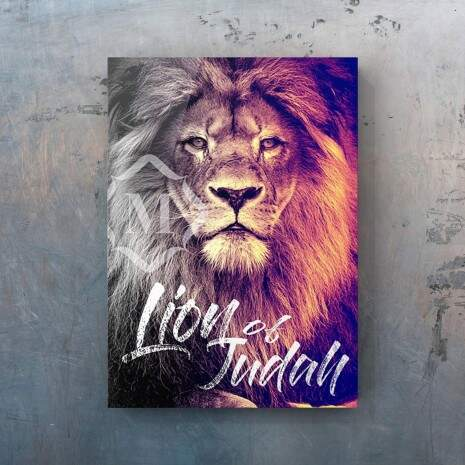 Quadro Canvas - Lion Of Judah 50x70cm
