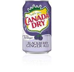 Refrigerante Ginger Ale Blackberry