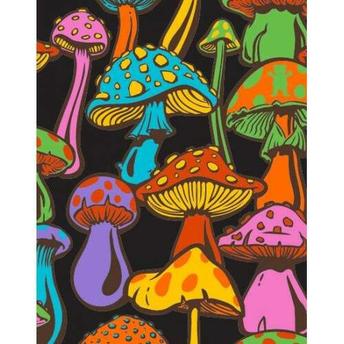 Cropped Grizzly Fungi - Black