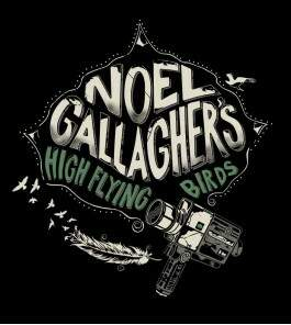 Camiseta Noel Gallagher - High Flying Birds - Feminino