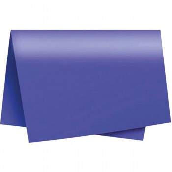 PAPEL CARTOLINA DUPLA FACE COLOR SET 47,5X66CM ROXO PCT.C/20