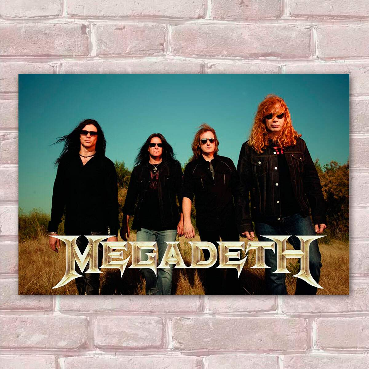 Placa Decorativa Megadeth 3