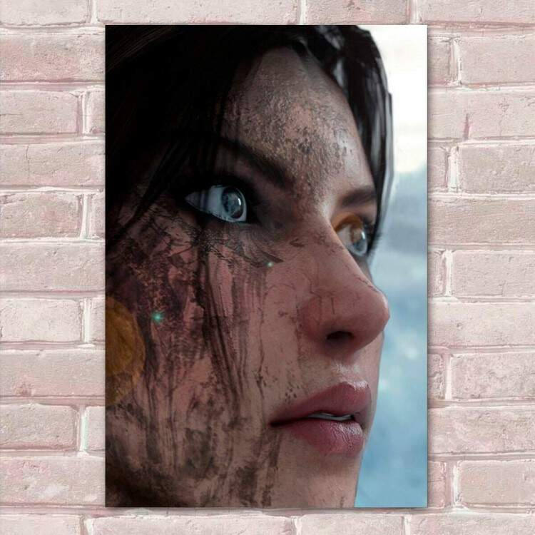 Placa Decorativa Tomb Raider 16