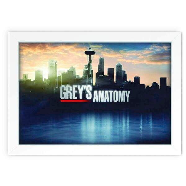 Quadro Decorativo Greys Anatomy 02