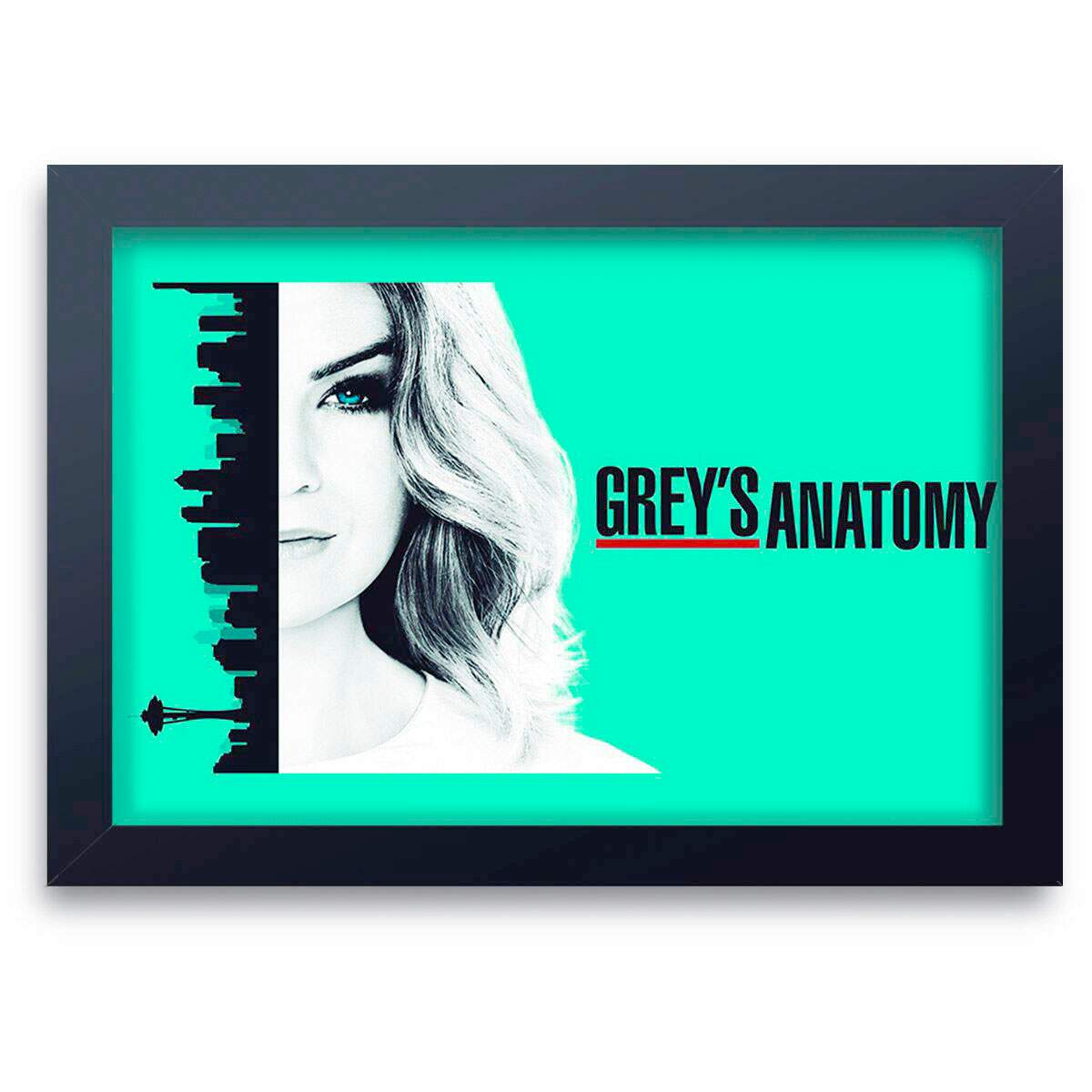 Quadro Decorativo Greys Anatomy 03