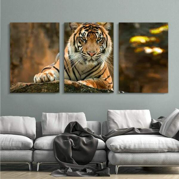 Kit 3 Quadros Decorativos Gigantes Tigre 01